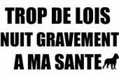 TROP DE LOIS.jpg