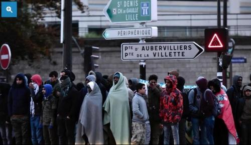 migrants plus.jpg